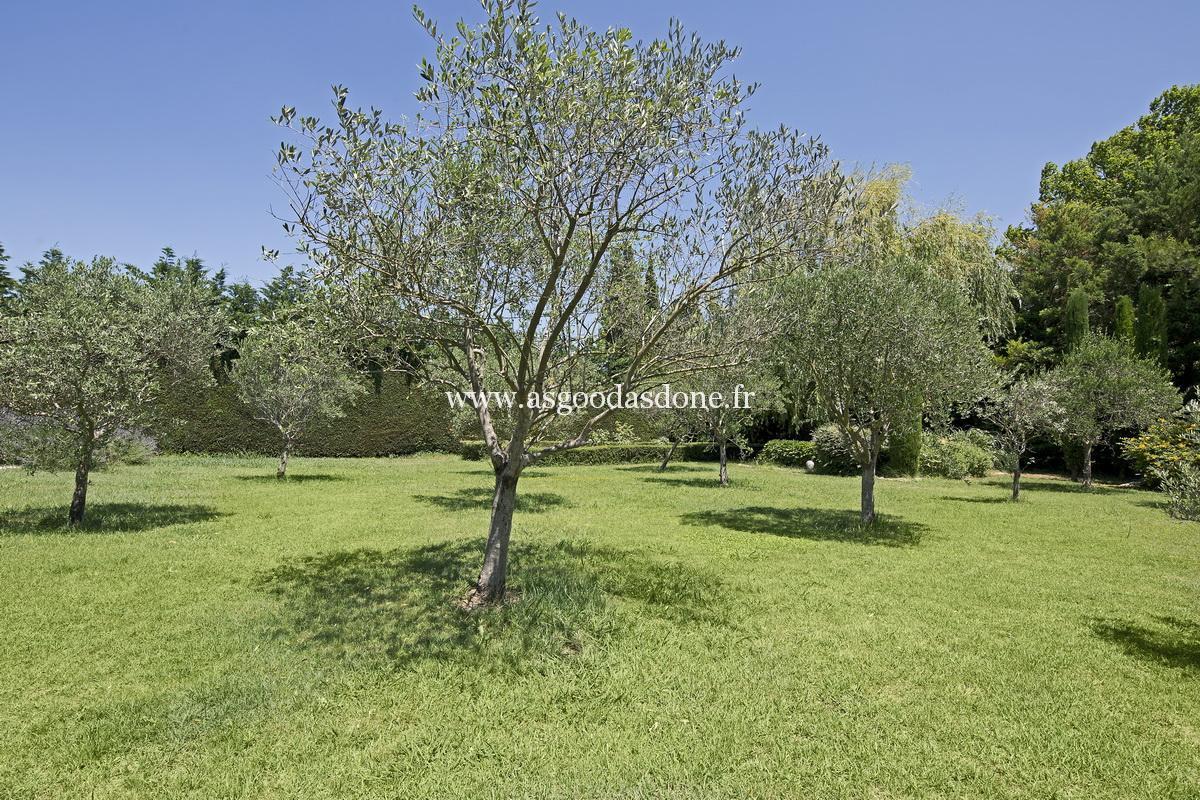 Location maison avec piscine saint remy de provence avec for Entretien jardin st remy de provence